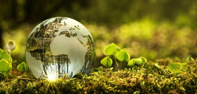 Comment la transformation digitale peut aider les organismes associatifs à changer le monde?