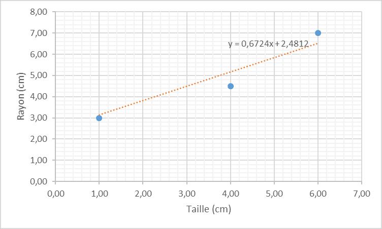 Descente de gradient optimisé - Tableau de relations taille / rayon