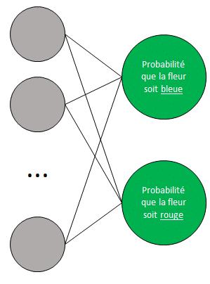 Réseau de neurones - Couche de sortie 2