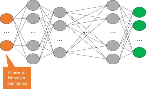 Réseau de neurones - couche de l'input